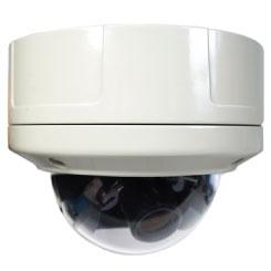 Megapixel Vandal Dome IP Camera